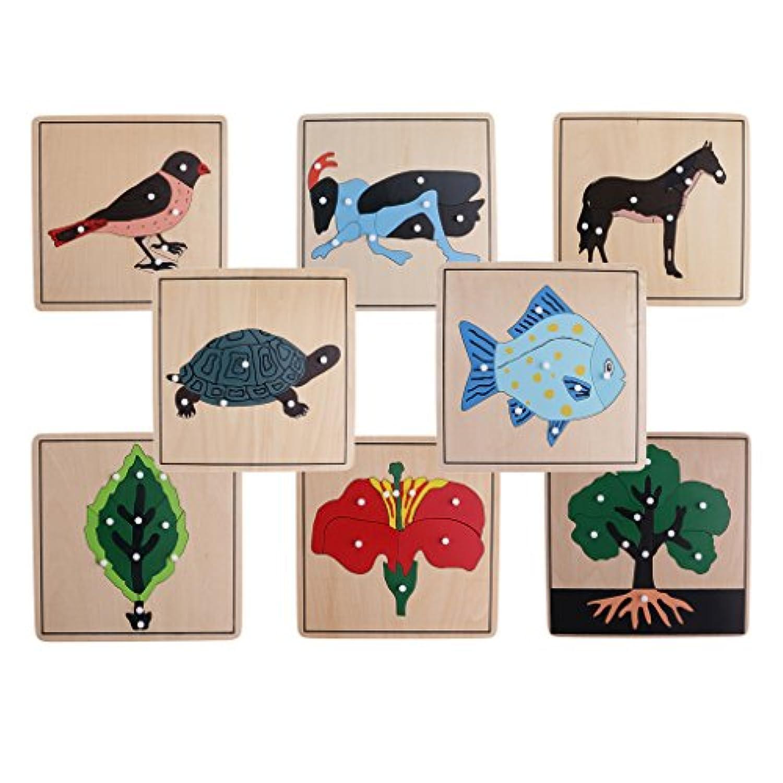 MagiDeal 8 Montessori動物Plant Shapeパズルfor Kids初期学習木製教育玩具