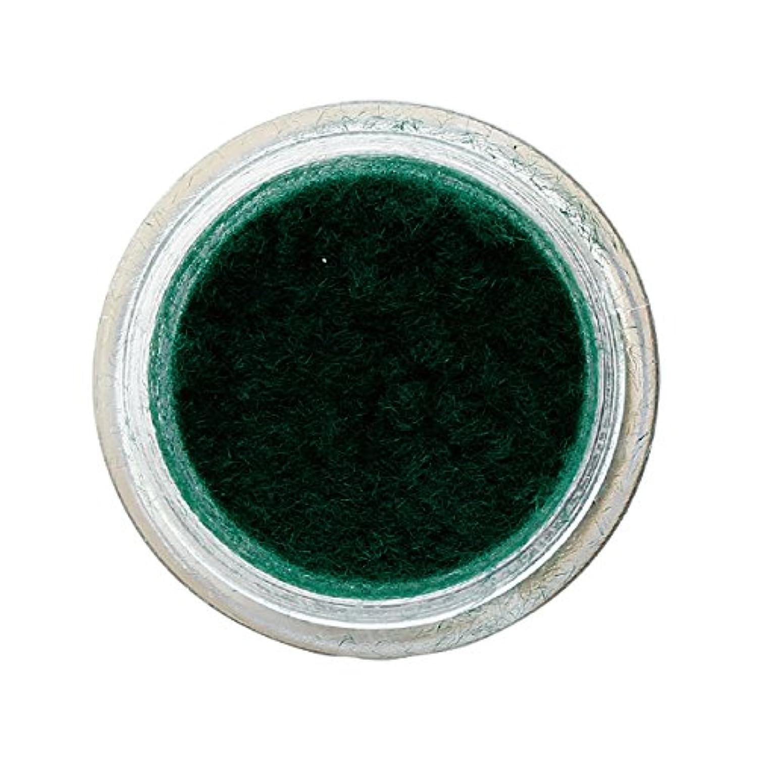 ペルーモチーフ鏡ベルベットネイル 1g モスグリーン
