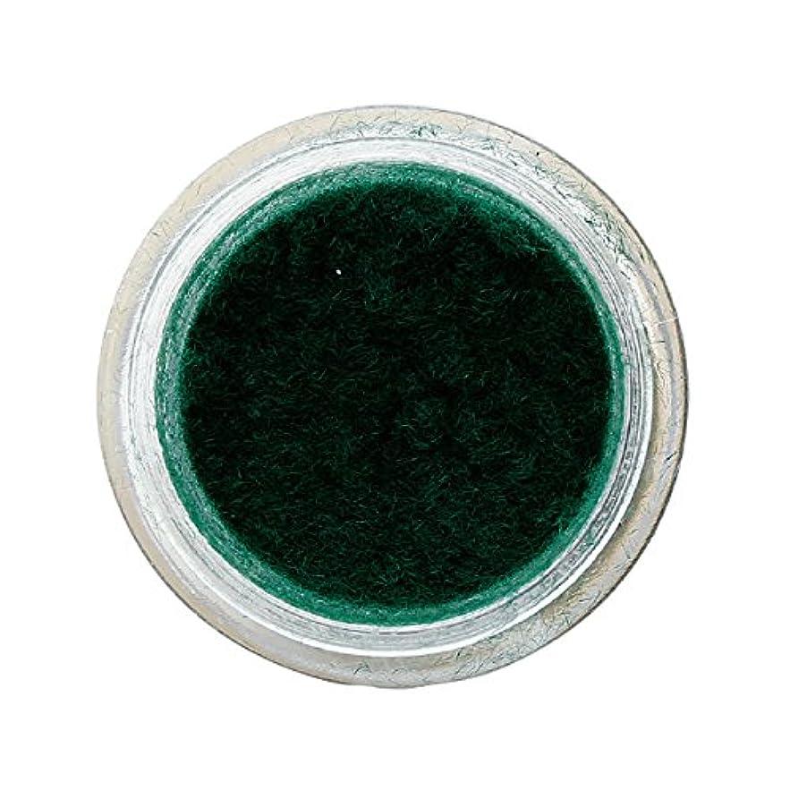 南アメリカ味わう感謝しているベルベットネイル 1g モスグリーン