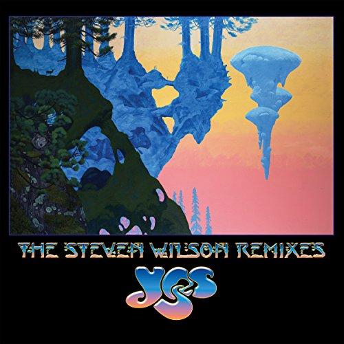The Steven Wilson Remixes [12 inch Analog]