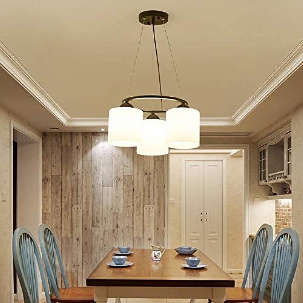 文房具滅多嫌がらせMXLTIANDAO シャンデリア ライト 装飾 天井ランプ 照明器具 吊り下げランプ リビング 食卓 居間 北欧 おしゃれ