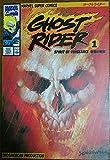 Ghost rider 1 復讐の精霊 (マーヴルスーパーコミックス)