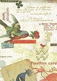 ROSSIロッシ 包装紙500x700mm 5枚入り CRT-106