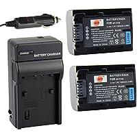 DSTE® アクセサリーキット NP-FV50 NP-FV30 NP-FV40 互換 カメラ バッテリー 2個+充電キット対応機種 HDR-CX220 CX330 CX580V PV790V FDR-AX100