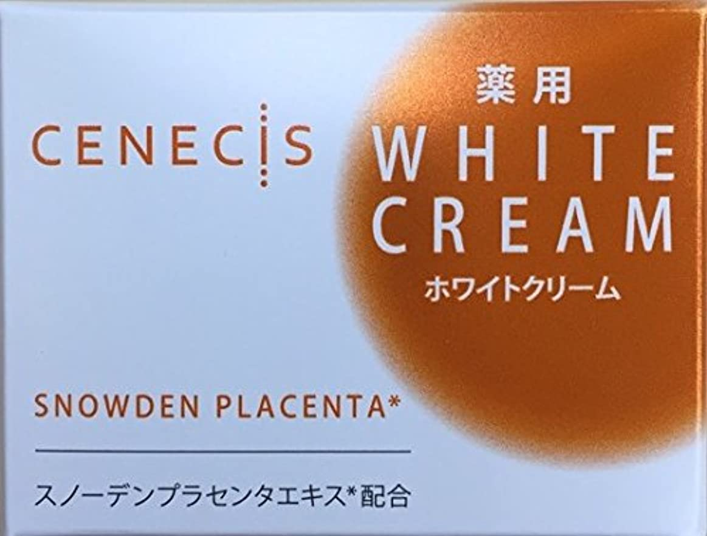 地下室近代化するアライメントスノーデン セネシス 薬用ホワイトクリーム 40g
