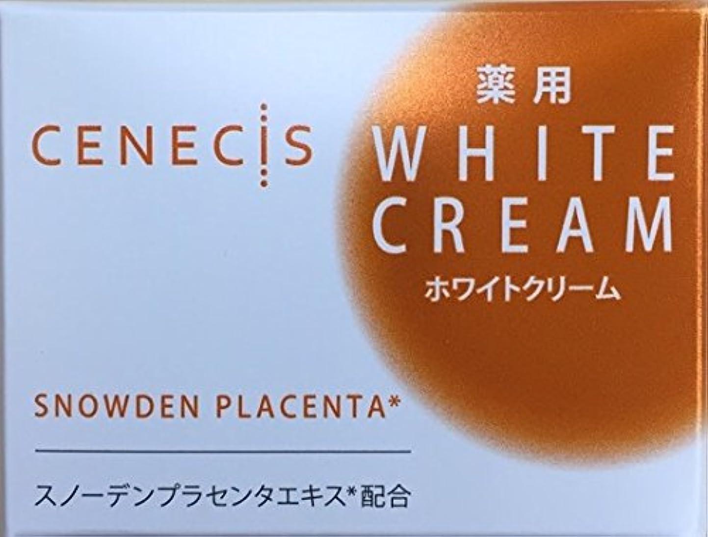 変位領収書年スノーデン セネシス 薬用ホワイトクリーム 40g