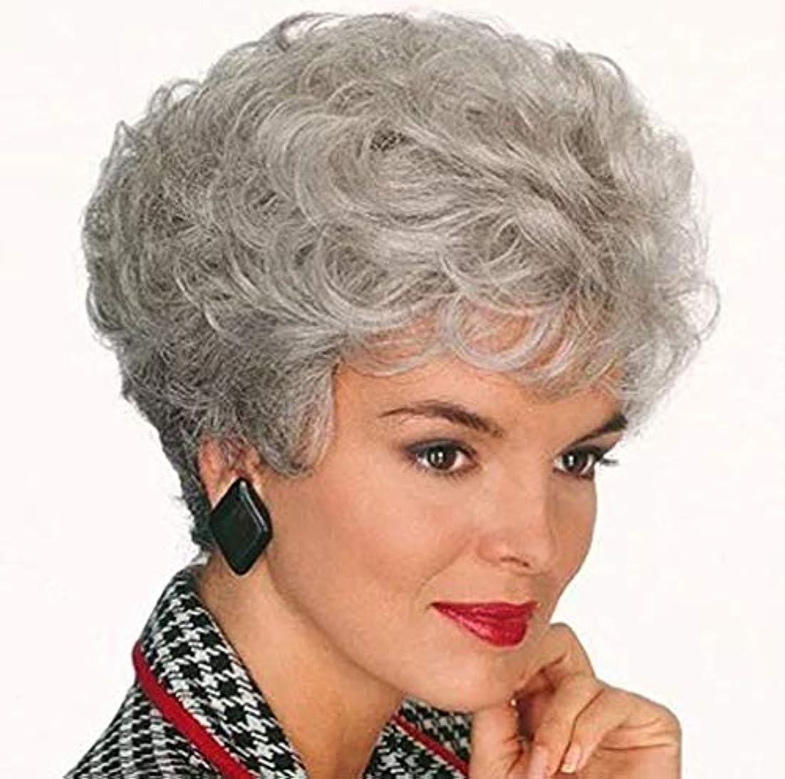 一緒夢中紛争女性かつらふわふわロングカーリー波状高品質耐熱合成本物の人間の髪の毛のかつら180%密度23センチメートル