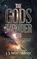 The Gods Wonder Too: Musings From Out of the Ether