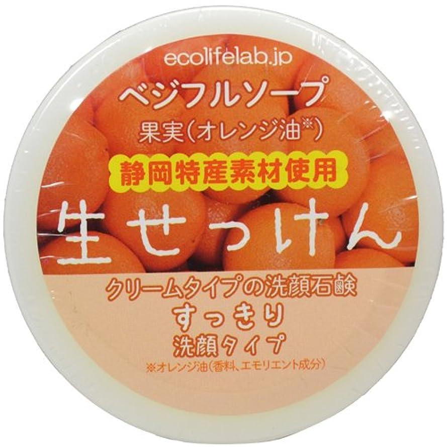 君主価値のない筋肉のベジフルソープ 生せっけん(果実) すっきり洗顔タイプ 40g