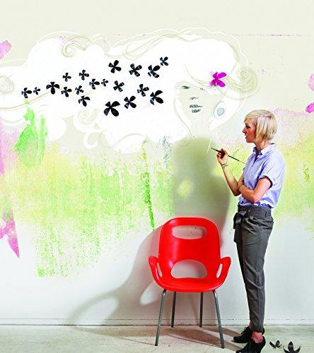 壁に咲く花。wallflower