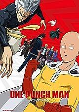 「ワンパンマン 第2期」BD全6巻予約開始。新作OVAも収録