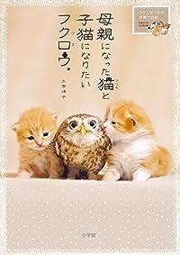 フクロウとネコの共同子育て!?奇跡の仲良しカップルの萌えキュン写真集