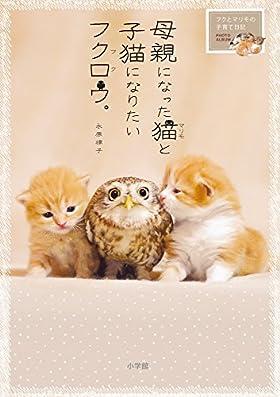 母親になった猫と子猫になりたいフクロウ。: フクとマリモの子育て日記