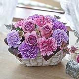 日比谷花壇 母の日 アレンジメント「ヴィオレノーブル」 2019年 母の日カード付き