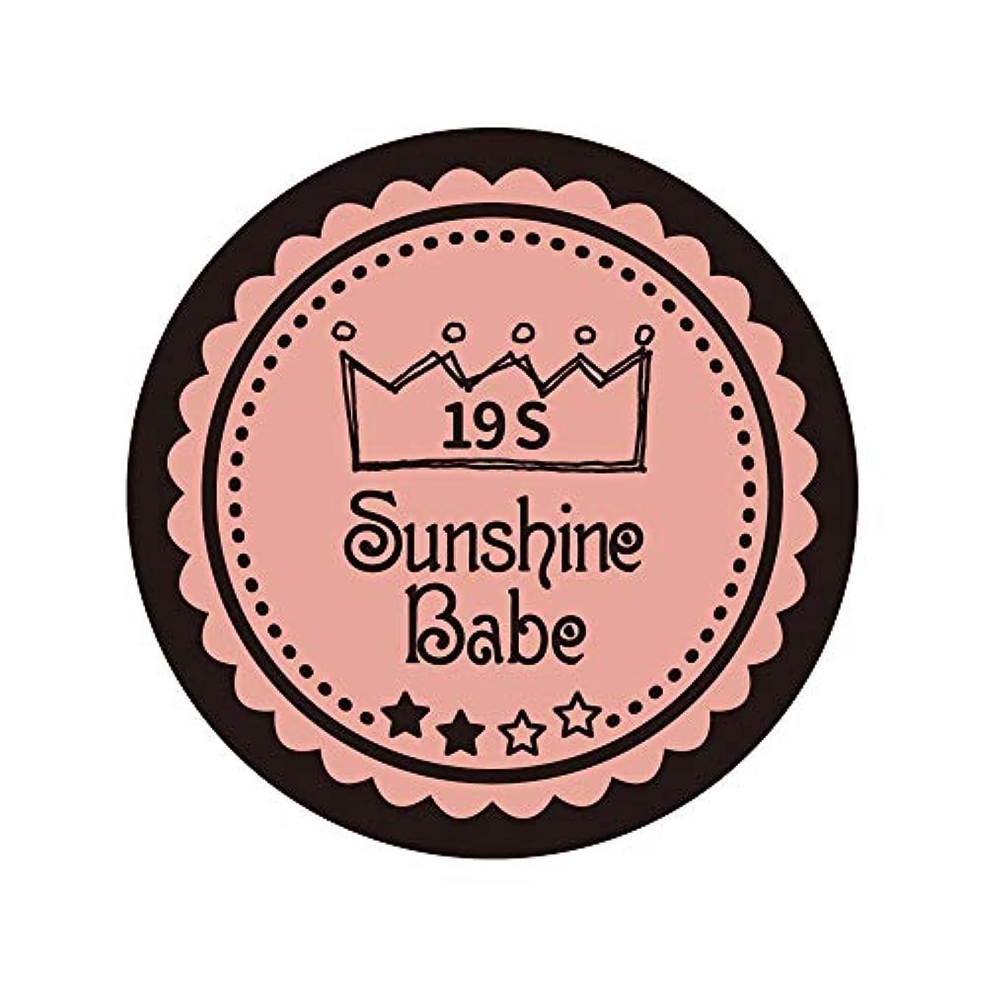 病気偽善錆びSunshine Babe カラージェル 19S ローズカシュ 2.7g UV/LED対応