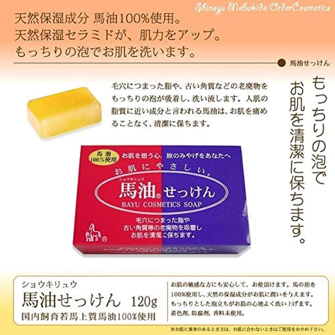 ソースレビュアーコミットショウキリュウ馬油石鹸120g×6