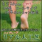 ハイグレード リアル 人工芝 ロールタイプ 芝丈30mm 1M幅 切り売り【最大9mまで】