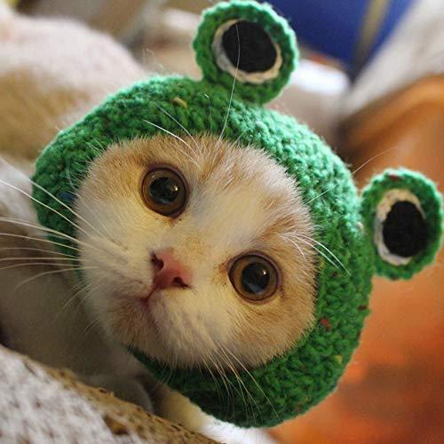 ペット帽子 猫用帽子 犬猫用ウィッグ ペット変身 猫コスプレキャップ 猫 かぶりもの コスプレ カエル 蛙帽子 チャンジャ 可愛い(S:22〜26CM)
