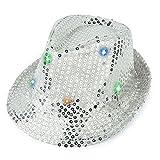 VBIGER パーティーグッズ 仮装 変装 帽子 ハロウィン ハット コスプレ コンサート イベントに (シルバー)
