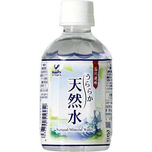 神戸居留地 北海道うららか天然水 ペット 280mlx24本