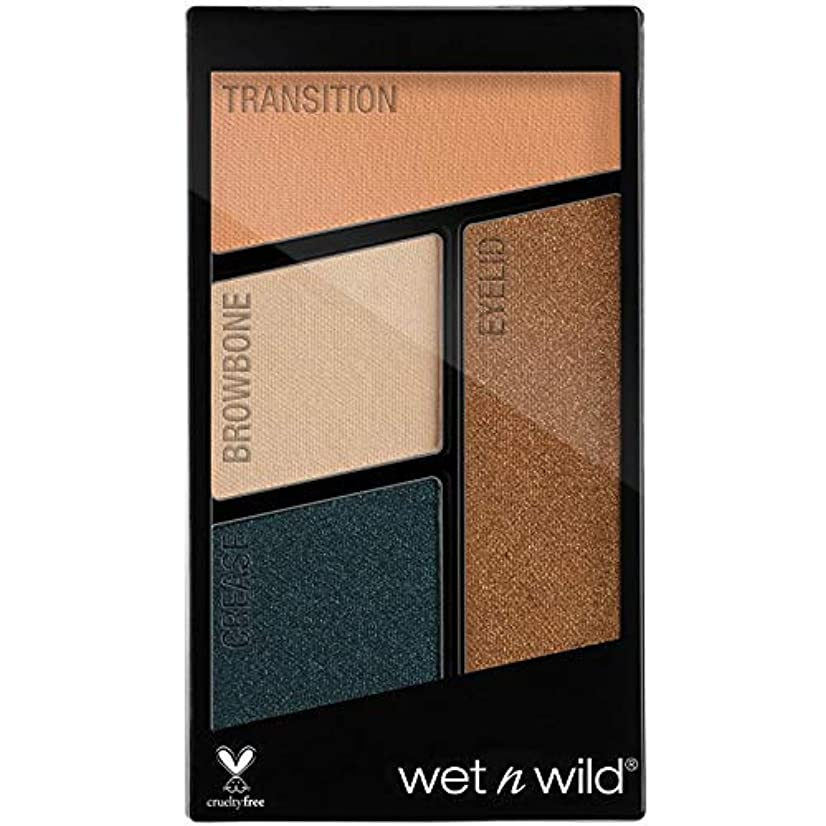 群集陸軍シーボードWET N WILD Color Icon Eyeshadow Quad - Hooked On Vinyl (並行輸入品)