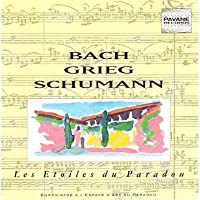 Bach,J.S.: Concerto in E Major