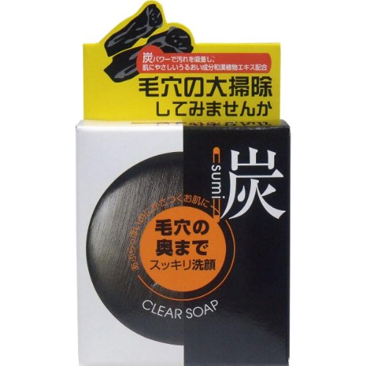 偏見同情シンプルさユゼ 炭透明石鹸(100g)