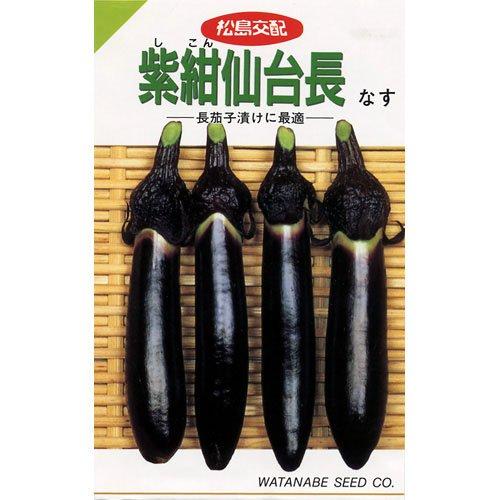 なす 種 【 紫紺仙台長なす 】 種子 小袋(約0.6ml)