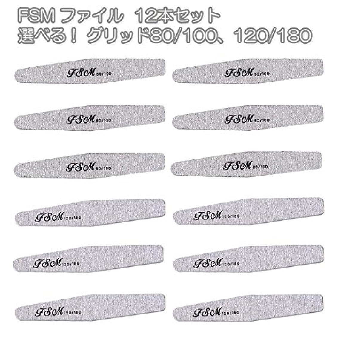 カウントアップ輝く展示会FSM ネイルファイル/バッファー12本セット(選べる!グリッド80/100、120/180) (G80/100の12本)