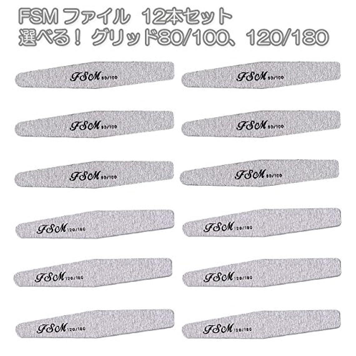 アグネスグレイレッドデート推進FSM ネイルファイル/バッファー12本セット(選べる!グリッド80/100、120/180) (G80/100の12本)