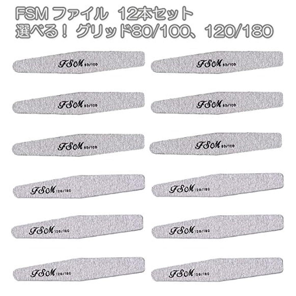 増幅引き出すバタフライFSM ネイルファイル/バッファー12本セット(選べる!グリッド80/100、120/180) (G80/100の12本)