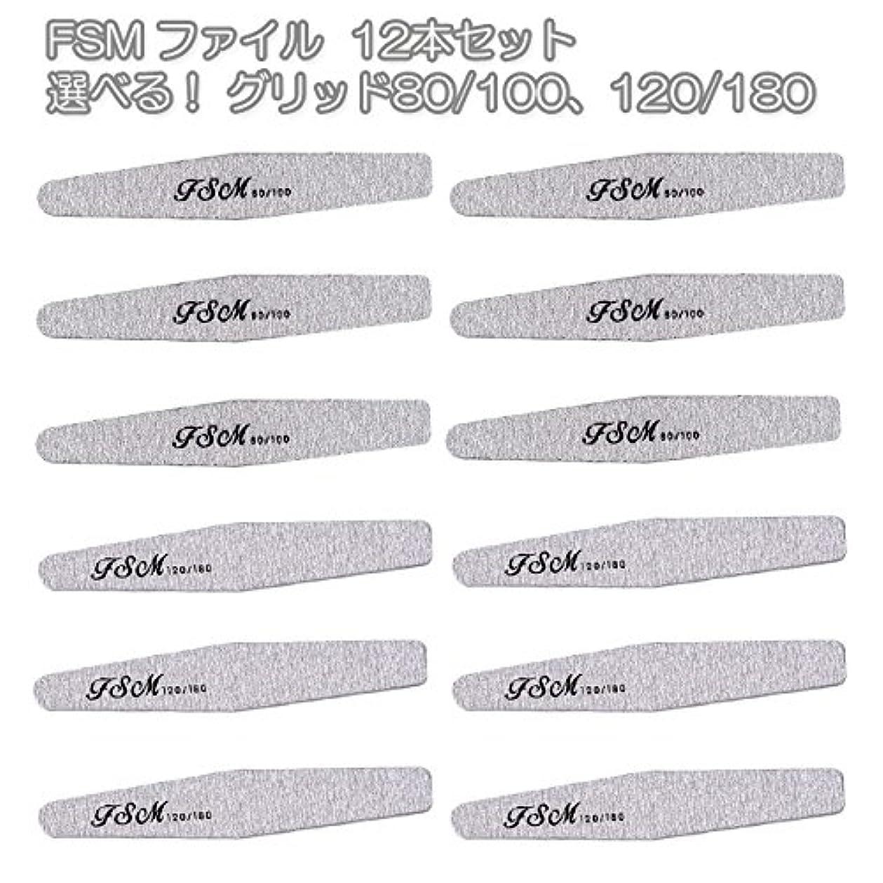 具体的にアフリカとしてFSM ネイルファイル/バッファー12本セット(選べる!グリッド80/100、120/180) (G120/180の12本)