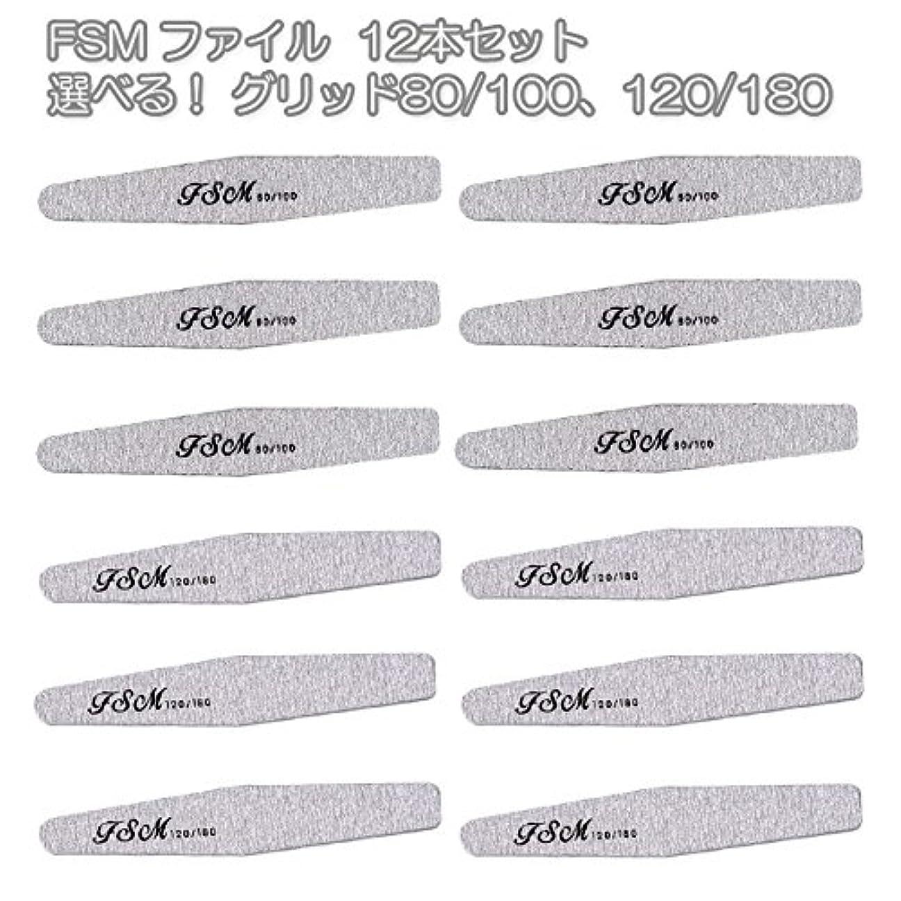 奪う乳製品乙女FSM ネイルファイル/バッファー12本セット(選べる!グリッド80/100、120/180) (G80/100の12本)