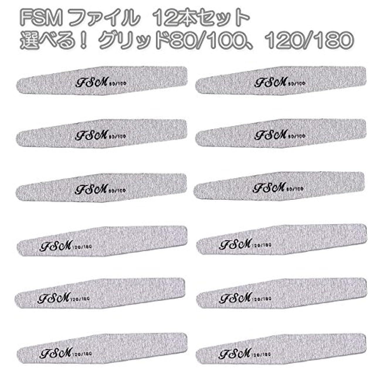 レイアマキシム食事FSM ネイルファイル/バッファー12本セット(選べる!グリッド80/100、120/180) (G80/100の12本)