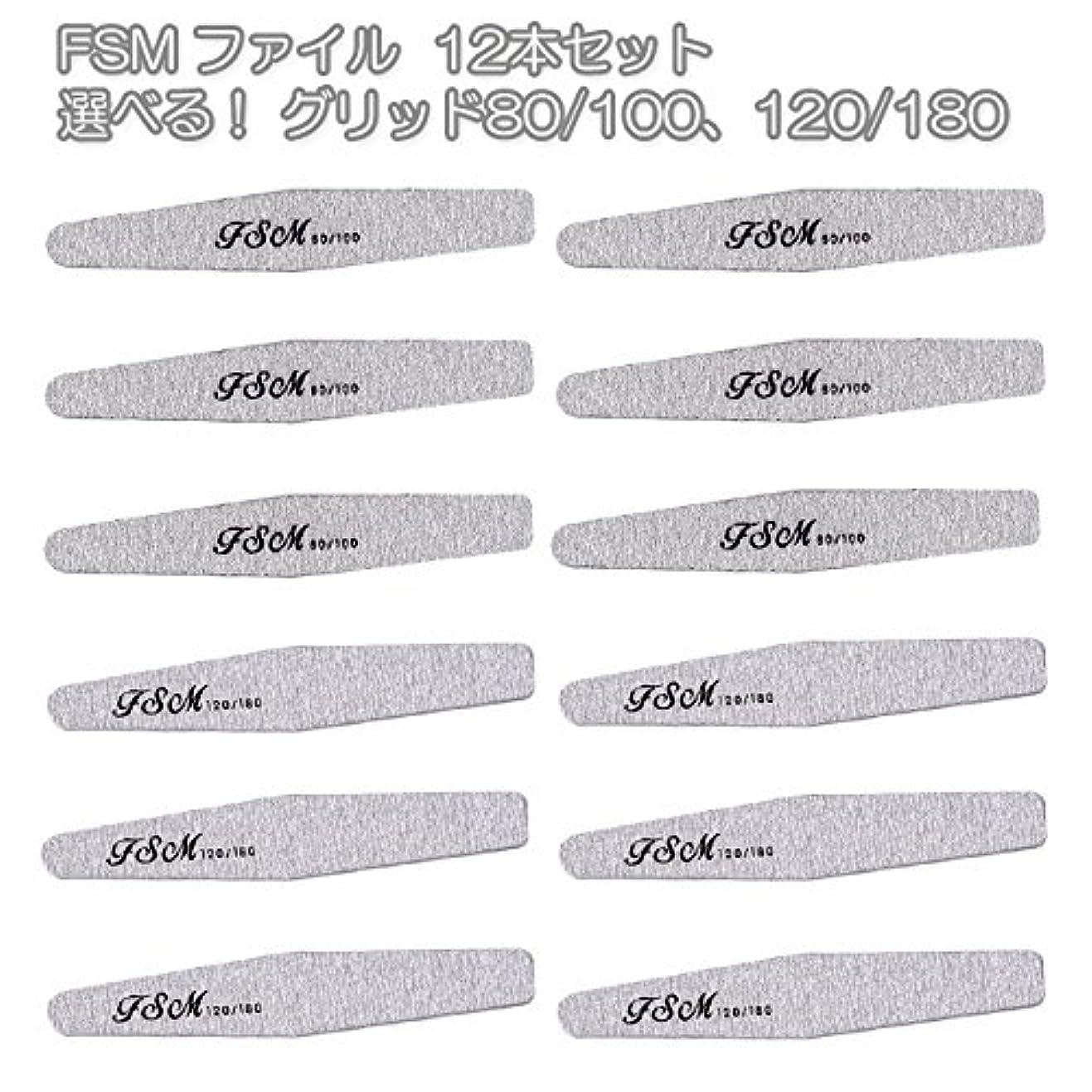 剛性酸素そんなにFSM ネイルファイル/バッファー12本セット(選べる!グリッド80/100、120/180) (G80/100の12本)