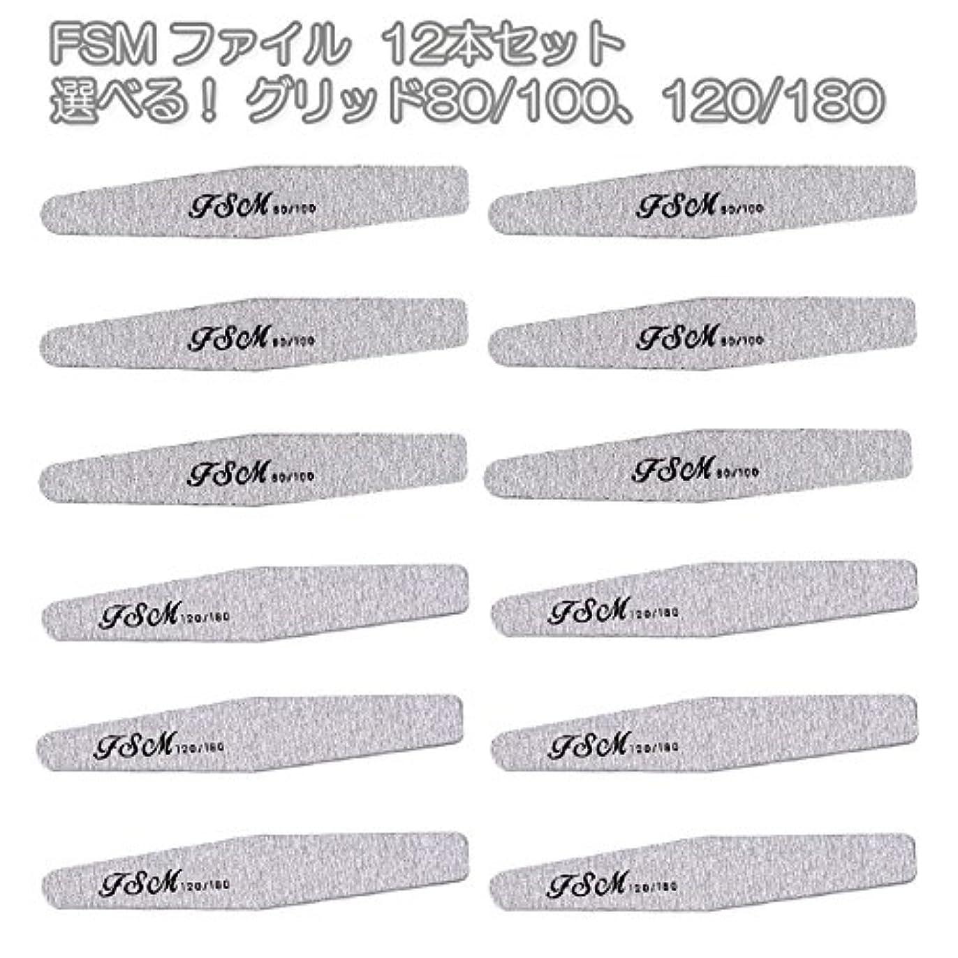 不確実虫白雪姫FSM ネイルファイル/バッファー12本セット(選べる!グリッド80/100、120/180) (G120/180の12本)