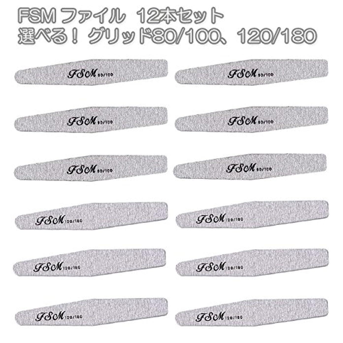 FSM ネイルファイル/バッファー12本セット(選べる!グリッド80/100、120/180) (G120/180の12本)