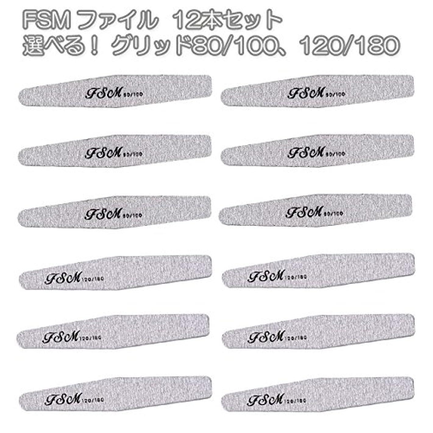 農学光沢長椅子FSM ネイルファイル/バッファー12本セット(選べる!グリッド80/100、120/180) (G80/100の12本)