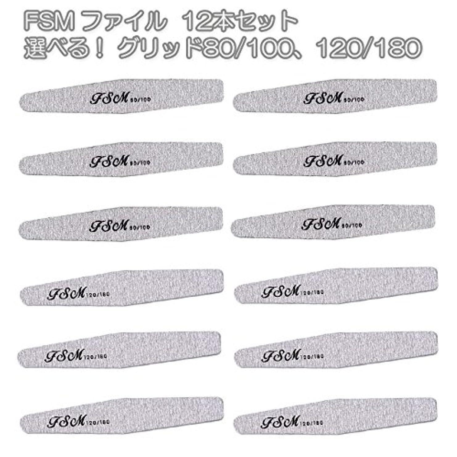 代理人縁石大破FSM ネイルファイル/バッファー12本セット(選べる!グリッド80/100、120/180) (G80/100の12本)