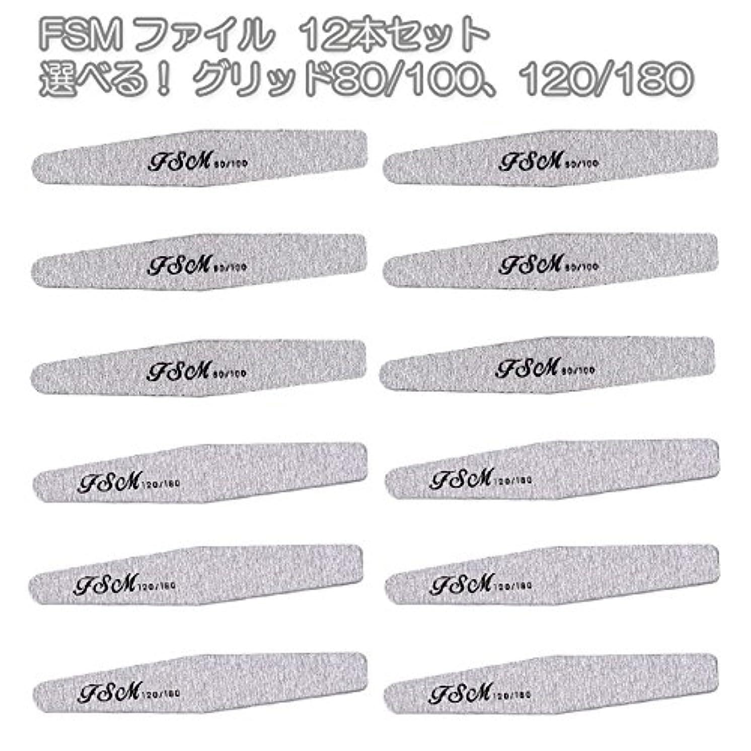 マイナー収束苦悩FSM ネイルファイル/バッファー12本セット(選べる!グリッド80/100、120/180) (G120/180の12本)
