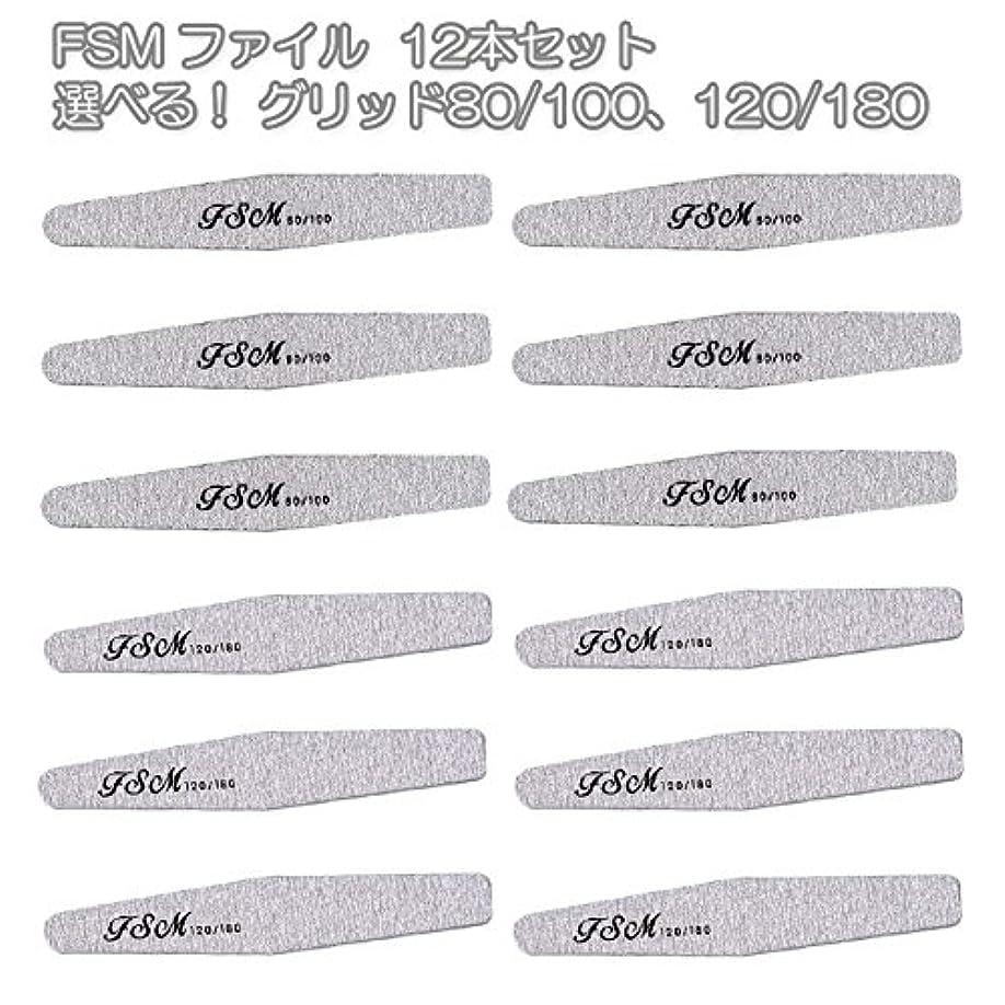 福祉処方湖FSM ネイルファイル/バッファー12本セット(選べる!グリッド80/100、120/180) (G80/100の12本)