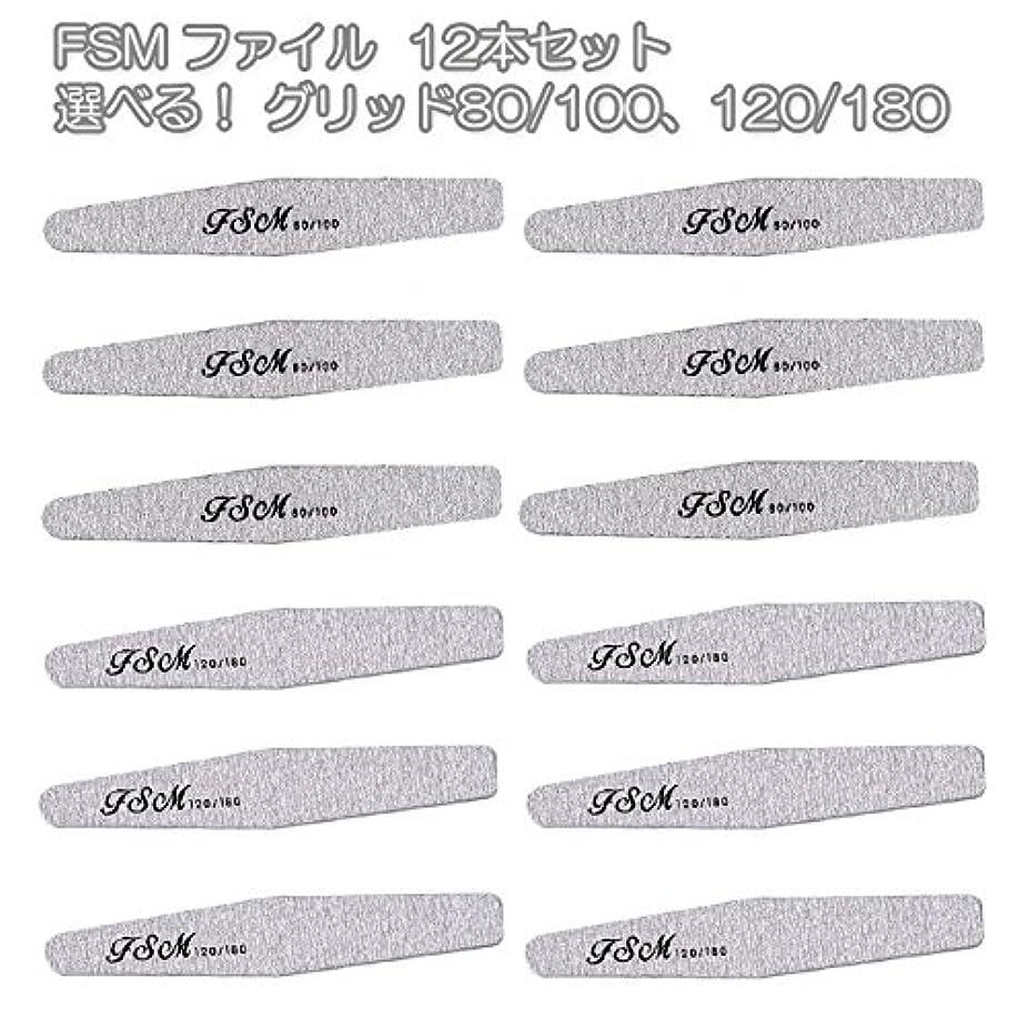 魔術ブランチ一時停止FSM ネイルファイル/バッファー12本セット(選べる!グリッド80/100、120/180) (G80/100の12本)