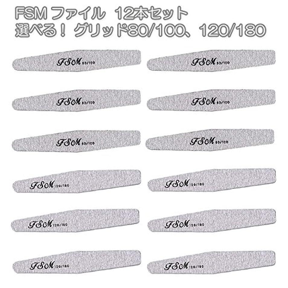 立ち寄る卵ウェーハFSM ネイルファイル/バッファー12本セット(選べる!グリッド80/100、120/180) (G80/100の12本)