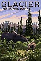 グレイシャー国立公園–Moose and Baby Calf 9 x 12 Art Print LANT-53483-9x12