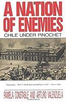 A Nation of Enemies: Chile Under Pinochet (Norton Paperback) by Pamela Constable Arturo Valenzuela(1993-05-17)