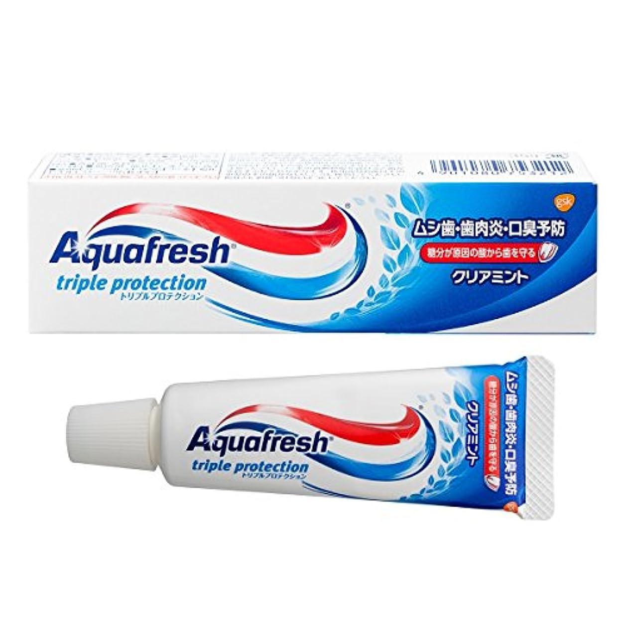 泳ぐホラー安全性アクアフレッシュクリアミント35g