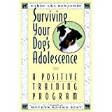 Surviving Your Dog's Adolescence: A Positive Training Program