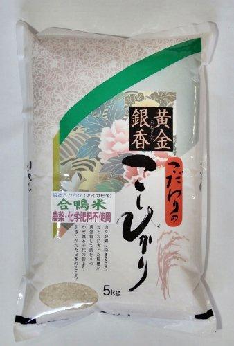 佐賀県産 玄米 合鴨米 無農薬こしひかり 5kg 令和元年産
