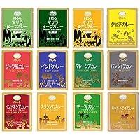 世界のご当地カレー 12種類お試しセット (MCC 業務用 レトルトカレー)