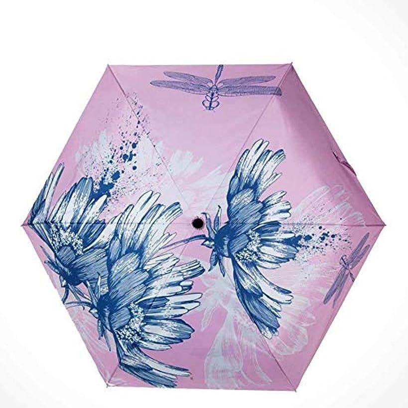 編集者ロバアーネストシャクルトンChuangshengnet 傘傘女性日傘傘屋外紫外線保護折りたたみ傘ダブル補強 (Color : B)
